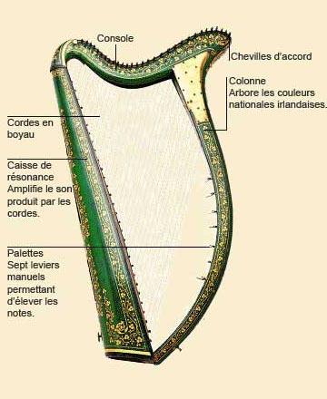photo de Harpe celtique