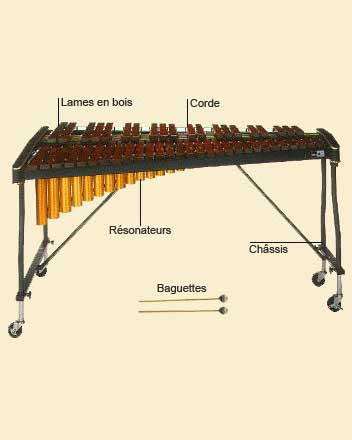 photo de Xylophone